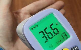 Мониторинг температуры при помощи тепловизора